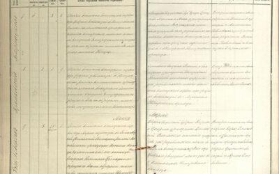 Kolejne 552 fotokopie zksiąg metrykalnych rzymskokatolickich parafii Niemirów